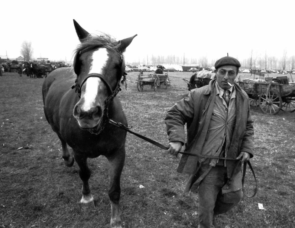 1967. A szeme se áll jól ennek a lókupecnek a szekszárdi állat- és kirakodóvásáron. Olcsó poén lenne azt írni, hogy ekkor még nem estek a ló túlsó oldalára a dohányzást visszaszorító intézkedésekben, bár tény: a ló erősen ódzkodik vagy a lókupectől, vagy a dohányfüsttől.