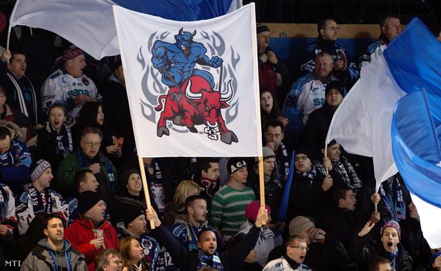 Szurkolók a Sapa Fehérvár - Dab.Docler jégkorong szuperkupa mérkőzés visszavágóján Székesfehérváron 2014. február 12-én.