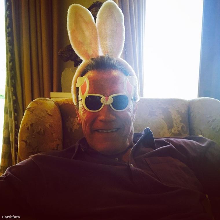 Arnold Schwarzenegger fülekkel: verhetetlen