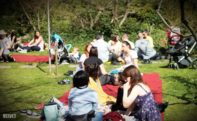 A kertben egyébként piknikezni tilos, idén csak április 11-én és 18-án szombaton teheti meg