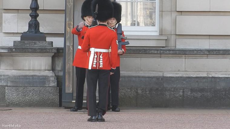 Biztosan mindenki erre várt: a szokásos őrséhváltáson a Buckingham-palotánál végre történt egy apróbb baki! Ahogy a címben is írtuk, egy jó kis elesésről van szó, amit képeken követhet végig!