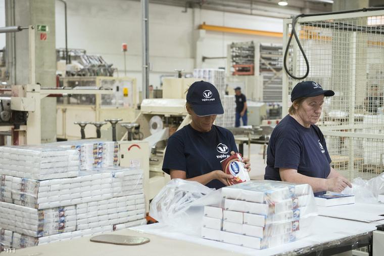 Dolgozók a háztartási papírárukat előállító Vajda Papír Kft. üzemében