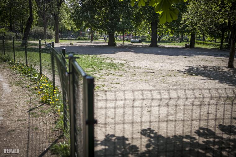 A Gesztenyéskert kutyafuttatója pont olyan méretű és pont annyira belátható, ami a legalkalmasabb a kutyáknak és a gazdáknak egyaránt