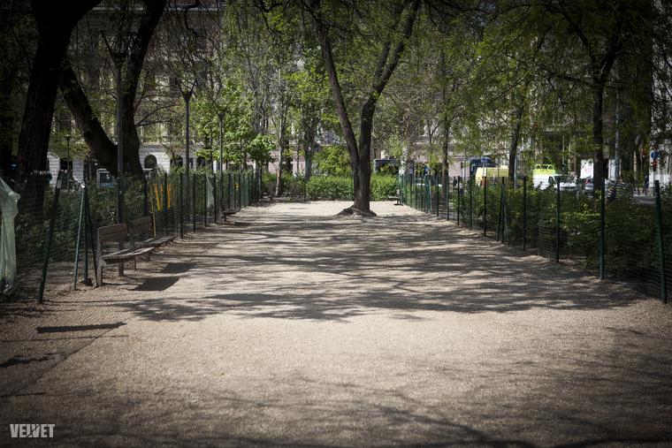 Az Erzsébet téren a József Attila úton is van egy kutyafuttató, ahol a kukát is nagyítóval kell keresni - van egy zsák a kerítésre akasztva