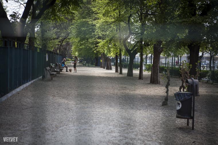 A futtató két végén nagyobb területeken is játszhatnak a kutyák, árnyékos, fás területen, lekerekített, kellemes kavicsok közt