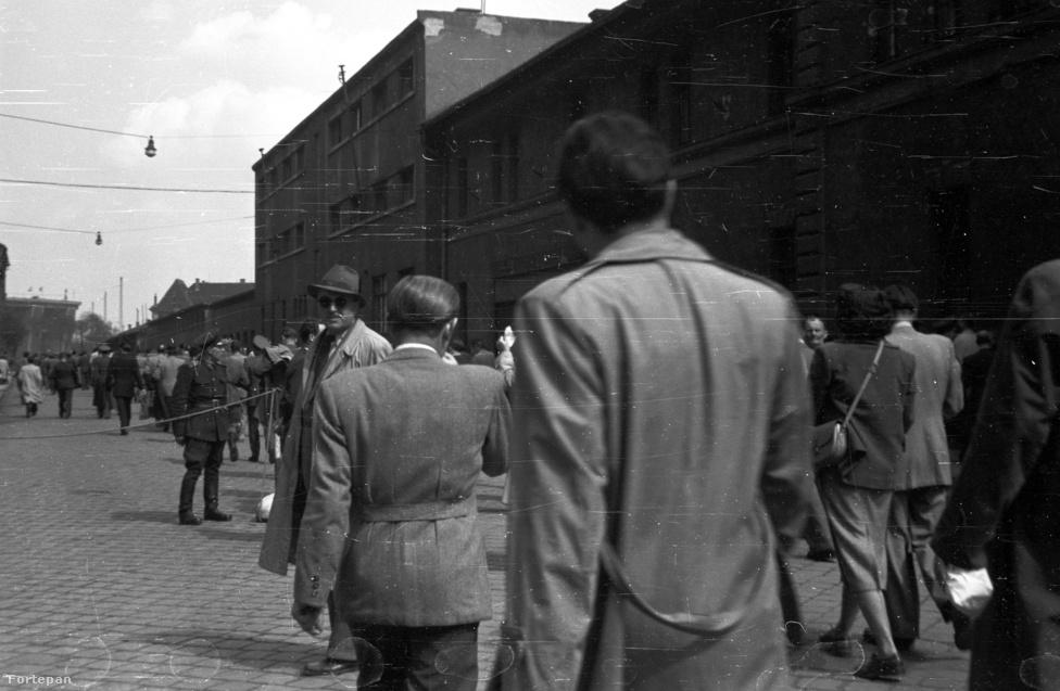 """""""Géza, nem túl buzis az, hogy egymást fotózzuk? Látszódom egyáltalán attól a Puskás-frizurás palitól?"""" Megy a tömeg a svédek elleni meccsre a Keleti pályaudvartól a Verseny után át, 1953."""