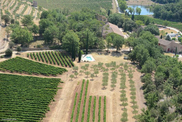 A Chateau Miravalhoz tartozik egy szőlő ültetvény is