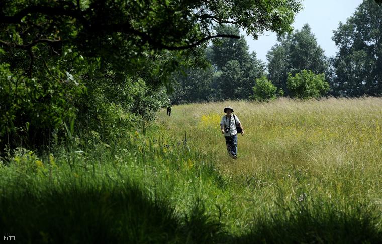 Érdeklődők mennek a táborfalvai lőtérhez tartozó terület bejárásán 2013. június 20-án. Sajtótájékoztató és terepbejárás keretében ismerhették meg az érdeklődők a Turjánvidék Natura 2000 területet és az ott folyó természetvédelmi munkát.