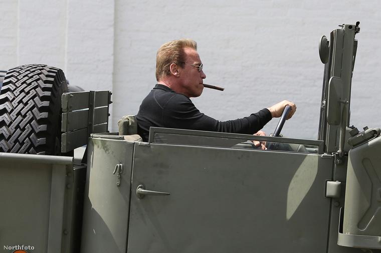 ...Schwarzeneggert, akivel úgy tűnt, hogy a kutya sem foglalkozott...