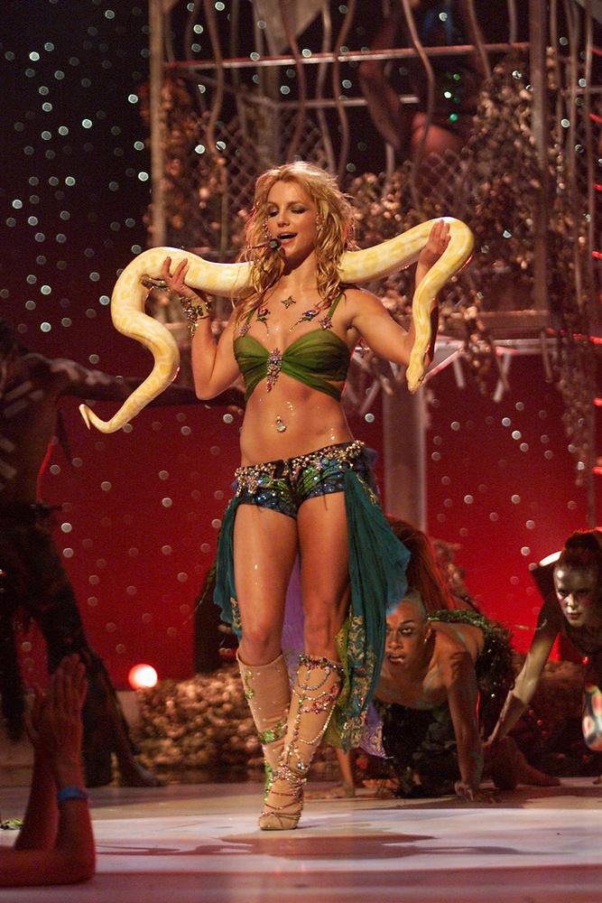 Kígyó!!