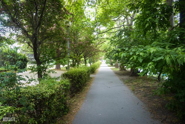 A gyalogosoknak sem kell közvetlenül nézni a rakpart autóforgalmát, bokrok, fák szegélyezik az ő útjukat is