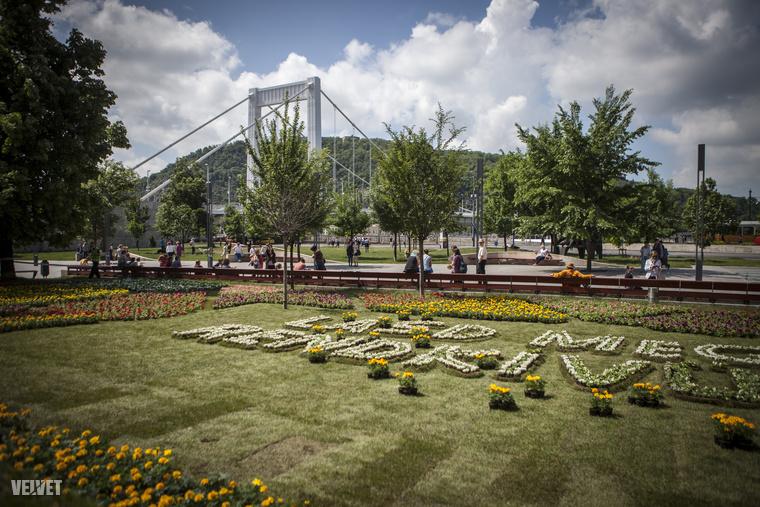 Elég jól nézett ki az Erzsébet híd tövében