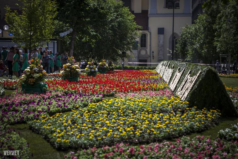 A virágszőnyeg egyébként 1000 négyzetméteres volt.