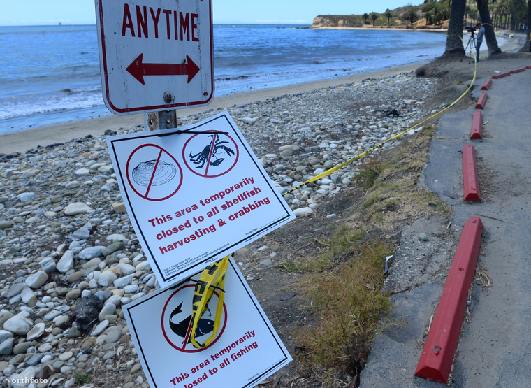 A parton tüntetések vannak, környezetvédelmi aktivisták két dolog miatt tüntetnek