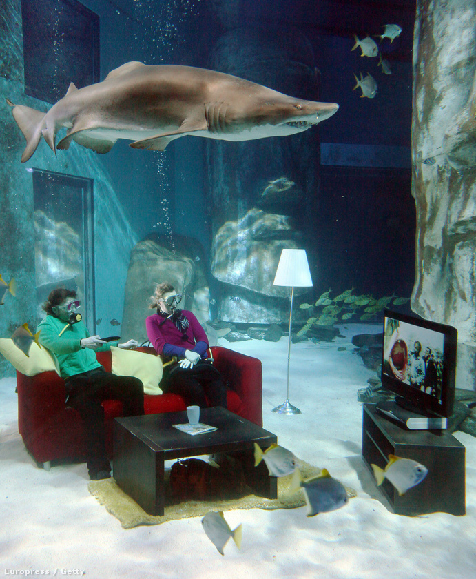 Így promózták Spielberg filmjének HD verzióját 2010-ben, a Londoni Akváriumban