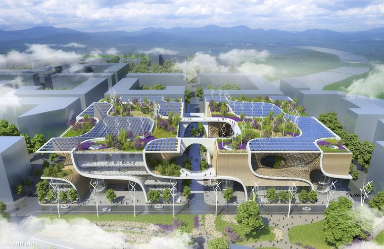 Az itt látható képeken a Wooden Orchid nevű projektje látható, amit egy kínai versenyre készített