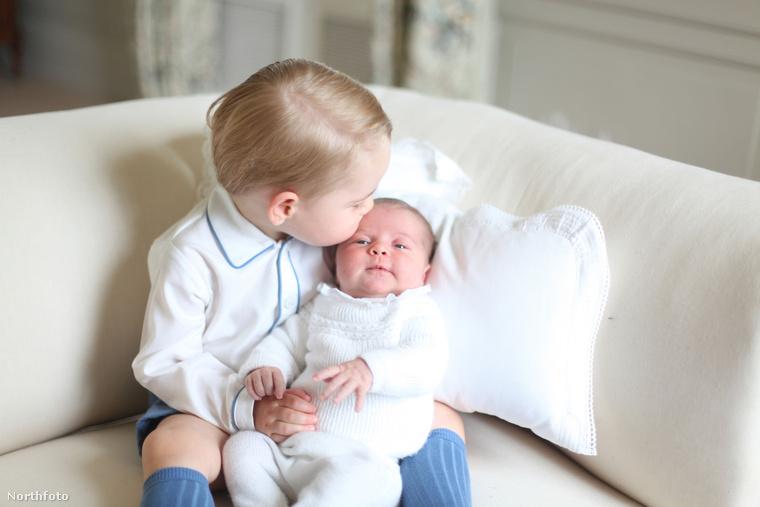 Az internet magánkívül örömködött a fotósorozat láttán, amelyet Katalin angol hercegné készített gyermekeiről, György hercegről és Charlotte hercegnőről.