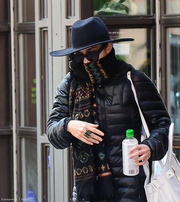 Vanessa Hudgens egyértelműen a legprofibb rejtőzködő