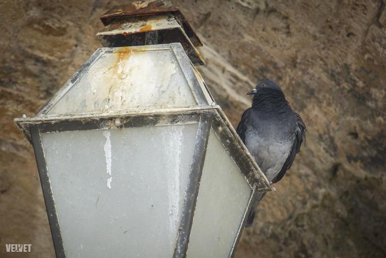 Persze attól még az épületrészeket is meg lehet becsülni, ez a lámpa például biztosan itt volt, amikor forgattak
