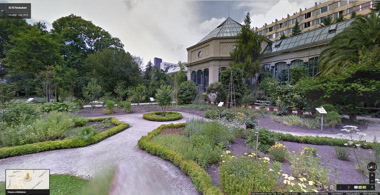 Az ELTE füvészkertje az egyik legfantasztikusabb csodahely, de még a diákoknak is 400 forintot kell fizetni azért, hogy bemehessenek, a fotójegy pedig 300 forintba kerül