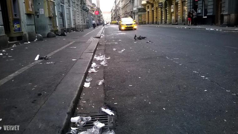 Nagyvárosi pillanatkép döglött galambbal