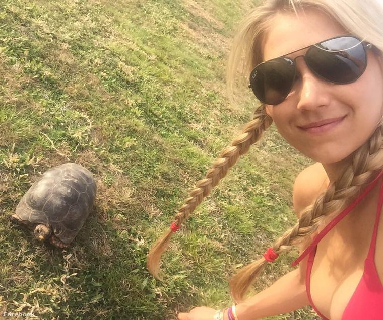 Ez itt egy teknős, mellesleg Anna Kurnyikova dekoltánya.