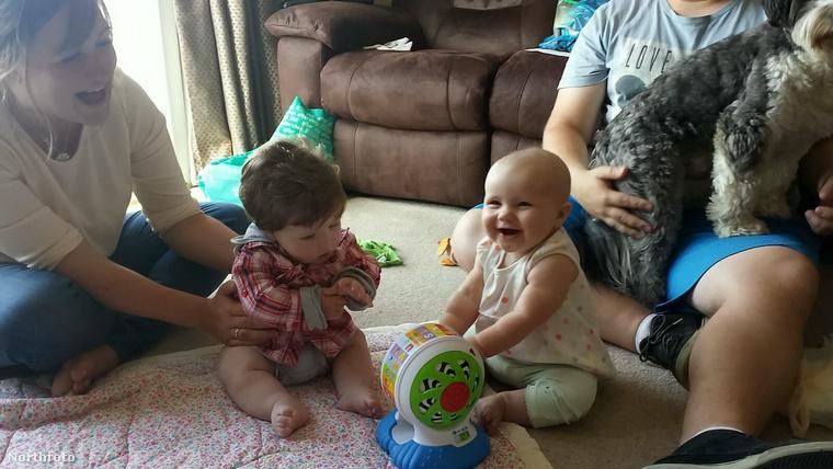 A kép baloldalán látható a féléves Fergus, a jobboldalon pedig a nála két héttel idősebb unokatestvére