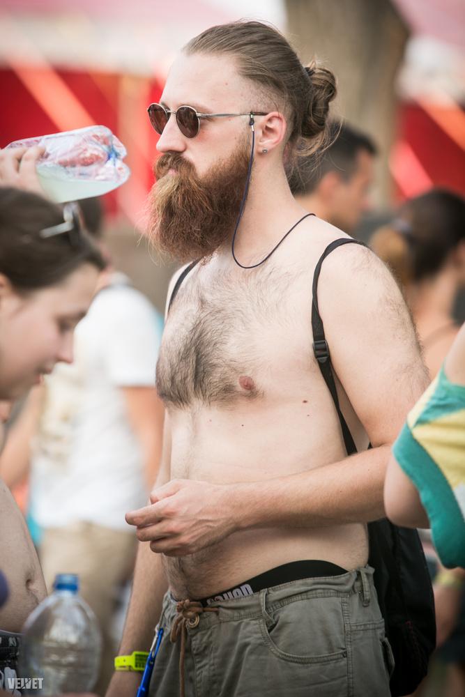 Vajon létező jelenség a szakállirigység?