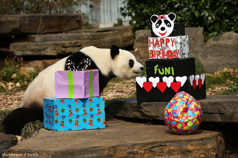 Ő Itt Fu Ni (igen, ugyanaz, mint angolul a vicces) és éppen meglátja, mennyi ajándékot kapott