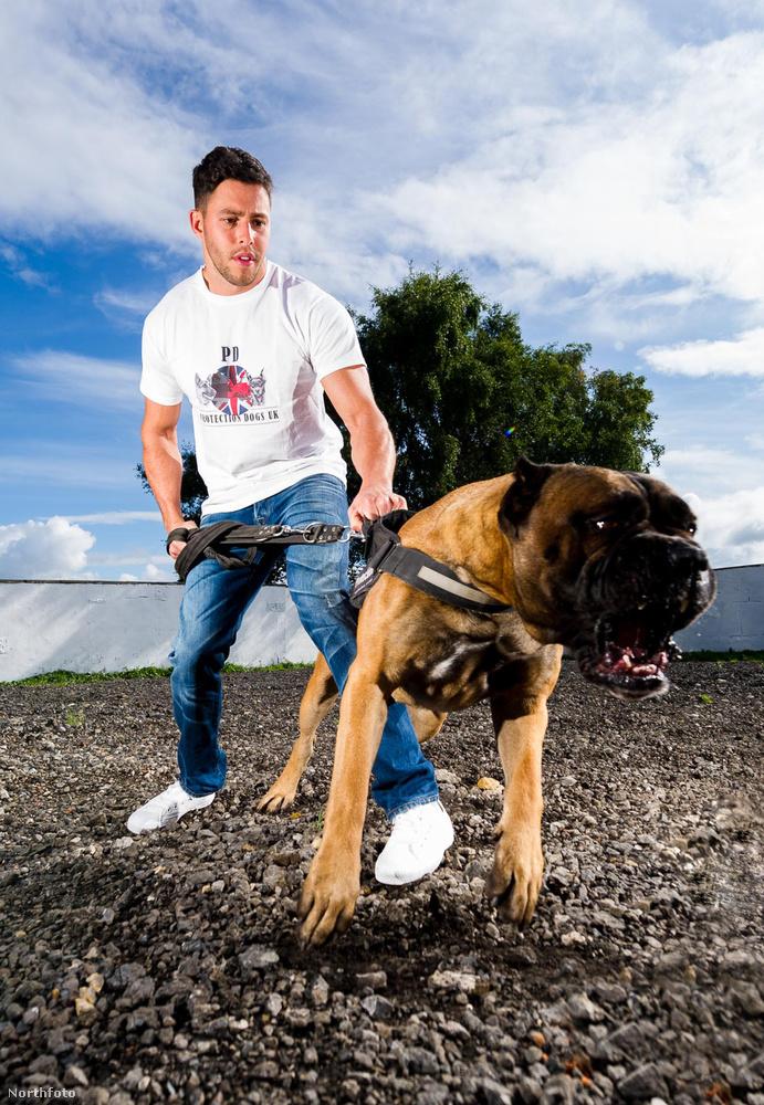 A képen egyébként munka közben láthatja a kutyakiképző Leedor Borlantot...