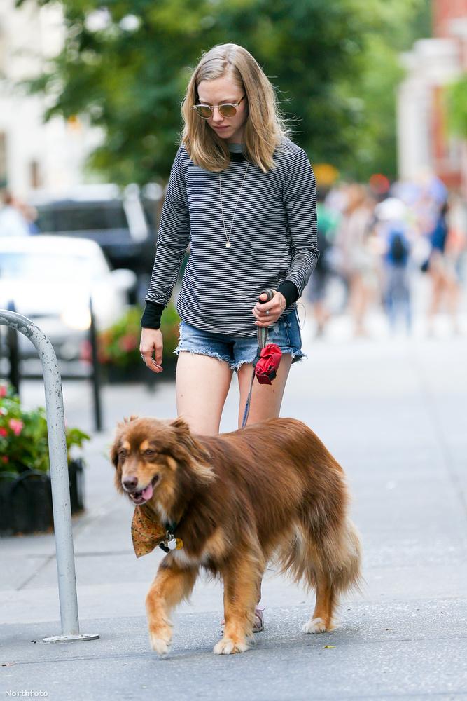 Amanda Seyfried színésznő, és a kutyája Finn tökéletes páros