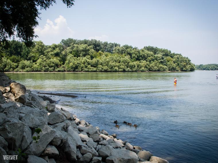 A sziget budai partja kellemesebb azoknak, akik napoznak, oda süt a nap egész nap